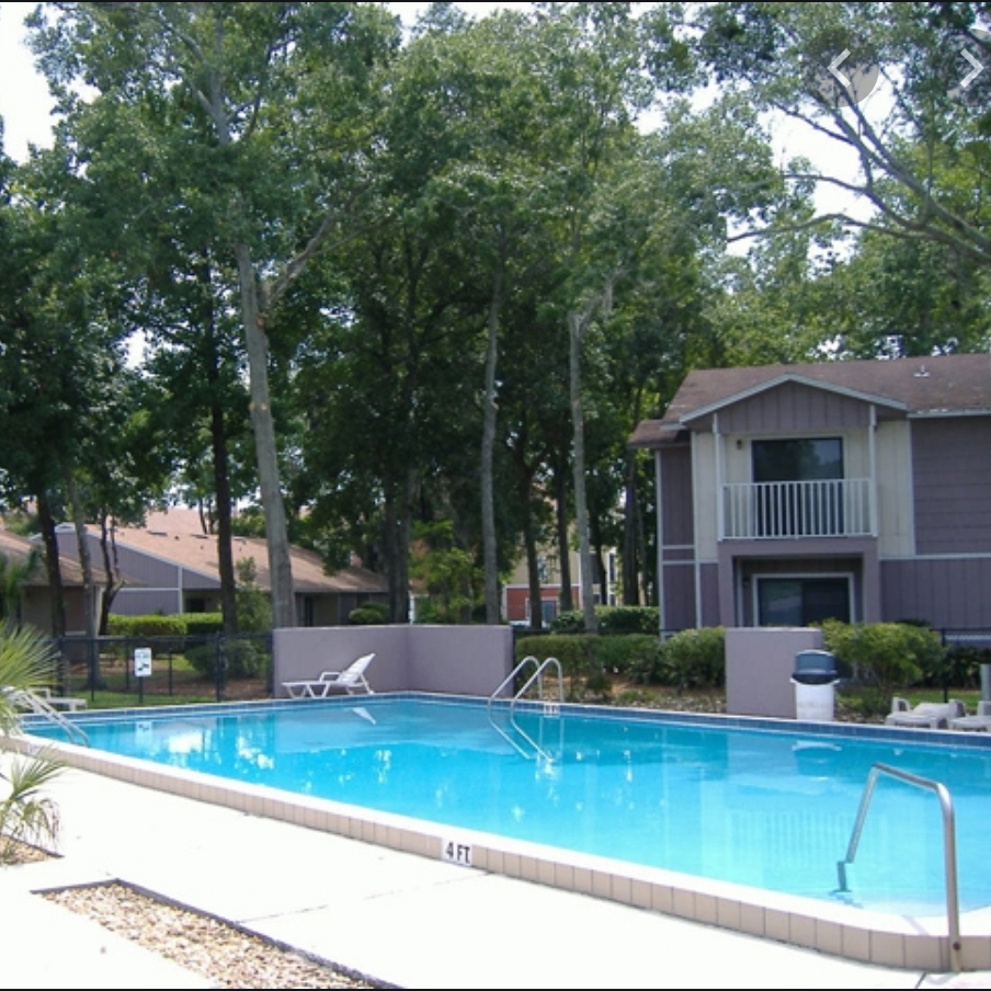 THE POINT Gainesville, pool view apartment home